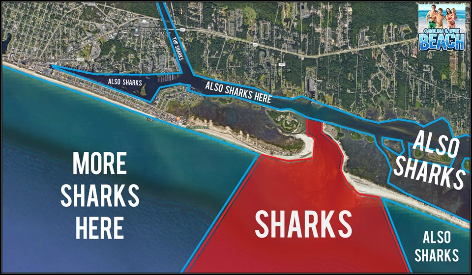 N.C. Facebook page maps out where people can find sharks (also snakes and mosquitos)